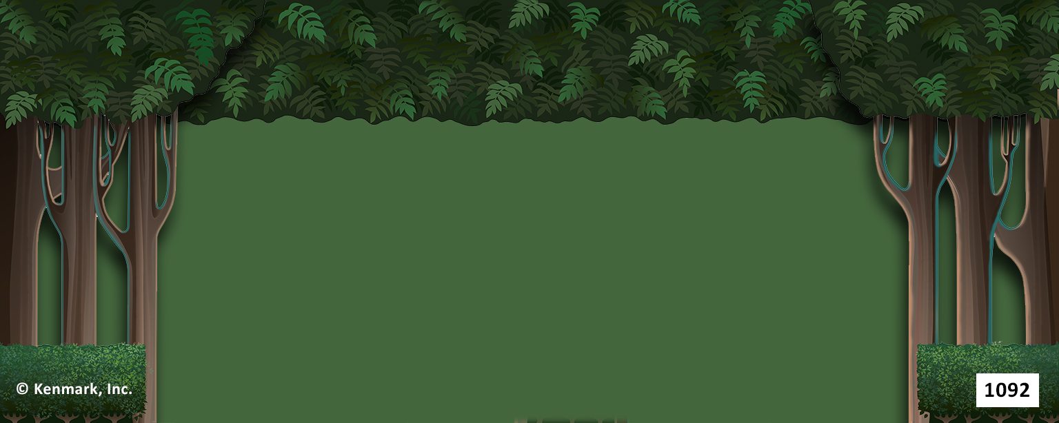 ED1092 Forest Border and Legs 20x50