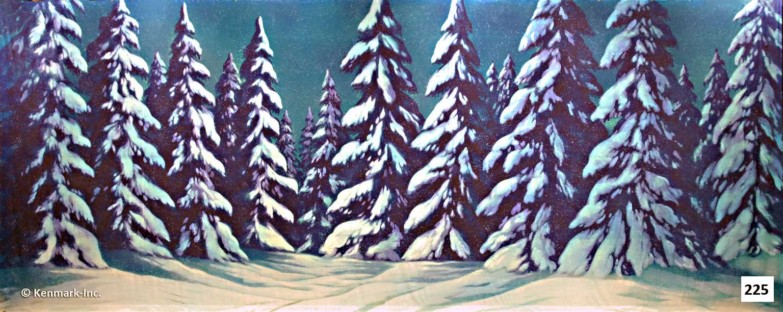 D225 Snow Forest